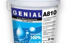 A 810 อะคริลิคกันซึม Acrylic Waterproofing Elastomeric