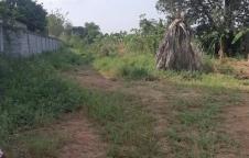 ขายด่วนที่ดิน เนื้อที่ 4 ไร่ 10 งานเศษ ที่ดินตั้งอยู่ที่ ท่าถ่าน