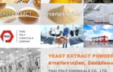 สารสกัดจากยีสต์, ยีสต์สกัด, Yeast extract, Yeast extract powder