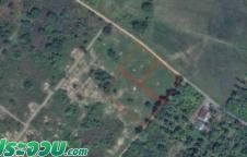 ขายที่ดิน กุยบุรี ประจวบ 4 ไร่ 16 วา ห่างจาก ถนนเพชรเกษม 200 ม.