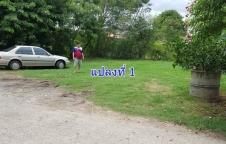 ขายที่ดินสวย 100 ตรว. ใกล้สำนักงานอำเภอเมืองลพบุรี 2 แปลง