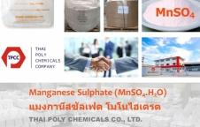 แมงกานีสซัลเฟต, Manganese Sulfate, Manganese Sulphate, MnSO4