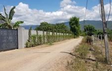 ขายที่ดินเปล่า 1 ไร่ ใกล้ถนนใหญ่ ใน อ.จอมทอง จ.เชียงใหม่