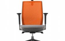 เก้าอี้ทำงานเพื่อสุขภาพ | DFprochair