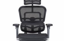 เก้าอี้สุขภาพ | Ergohuman.co.th