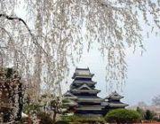 เที่ยวญี่ปุ่น ราคาตามงบ