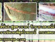 สารทาหน้ายาง ยางพารา ยางตายนึ่ง หน้ายางตายนึ่ง  pnpandbest