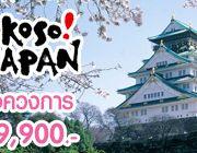 เที่ยวญี่ปุ่น SHOCK PROMOTION OSAKA TOKYO 5 วัน ถูกช๊อควงการทัวร์