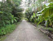 ขายที่ดินสวนผลไม้ ทำเลดีติดถนนเดินทางสะดวก พื้นที่ 2 ไร่ ราคา 2.4 ล้านบาท