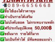 ประกันภัย พรบ ราคาถูก รับสมัคร ตัวแทนประกันภัย รายได้ดี 20insure 14779