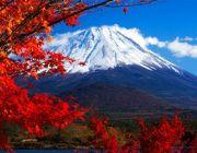 ทัวร์ญี่ปุ่นกันยายน 2557 2014 ทัวร์โตเกียว ฟูจิ โอซาก้า 6 วัน 32900