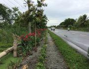 ขายที่ดิน 181 ตารางวา ติดถนนอยู่วิทยา ใกล้ สนง.เขตหนองจอก ติดต่อ 0981019878