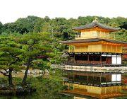 Japan Lover โอซาก้า เกียวโต โตเกียว 5 วัน 4 คืน