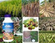 ว้าว   อาหารเสริมพืช SWชนิดเข้มข้น และไคโตซานมิกซ์ ตรายิ้มสยาม สกัดจากธรรมชาติ