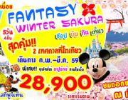 ทัวร์ญี่ปุ่น FANTASY WINTER SAKURA 5 วัน 4 คืน ราคา 28900