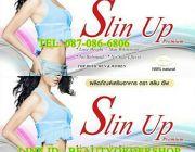 สลินอัพ พรีเมี่ยม Slin Up Premium ช่วยสลายไขมัน ลดเซลลูไลท์ กระชับสัดส่วน