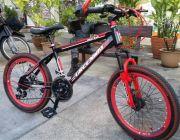 """จักรยานเสือภูเขา LVDAO รุ่น Pioneer 20"""""""