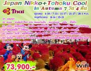 Japan Nikko Tohoku Cool in Autumn 7D4N