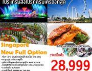 Singapore Full Option 4D3N
