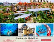 Singapore Haha Package by Resort World Sentosa