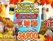 ทัวร์ญี่ปุ่น AUTUMN IN HOKKAIDO 6 วัน 4 คืน พฤศจิกายน - ธันวาคม 2559 34900 บาท
