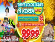 ทัวร์เกาหลี 5 วัน 3 คืน ราคา 9900 เท่านนั้นตลอดเดือนพฤศจิกายน