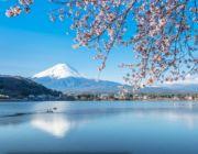 เกียวโต-ทาคายาม่า-เจแปนแอลป์-ฟูจิ-พิ้งค์มอส-โตเกียว-ช้อปปิ้ง