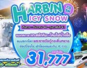 SHE01 HARBIN ICY SNOW 7D5N BY XW