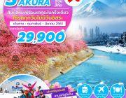 FANTASY WINTER SAKURA 5D3N BY XJ