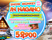 SNOW MONKEY IN NAGANO 6D3N BY TG