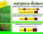 หญ้าเทียมจัดงานปูสนามปูสวน